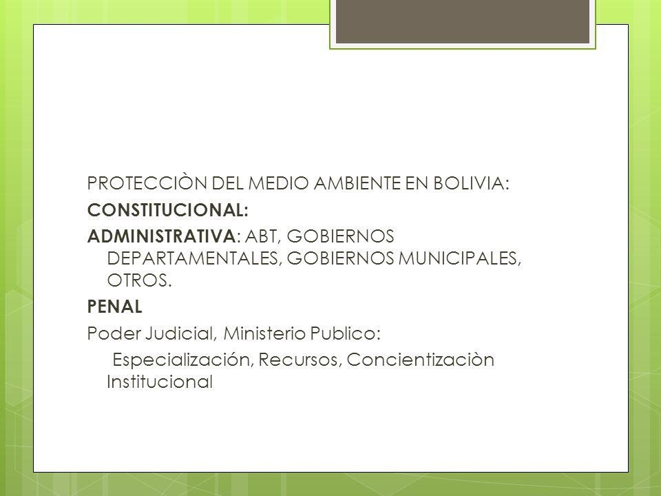 PROTECCIÒN DEL MEDIO AMBIENTE EN BOLIVIA: