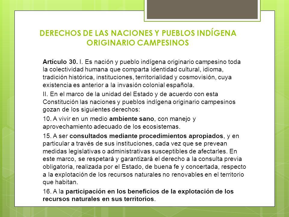 DERECHOS DE LAS NACIONES Y PUEBLOS INDÍGENA ORIGINARIO CAMPESINOS