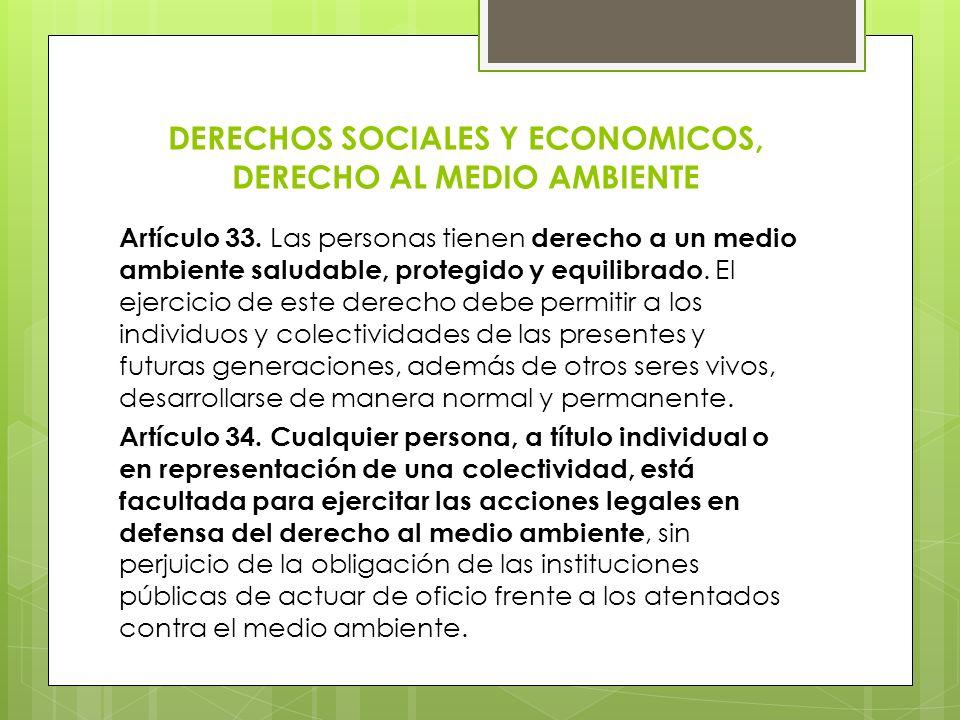 DERECHOS SOCIALES Y ECONOMICOS, DERECHO AL MEDIO AMBIENTE