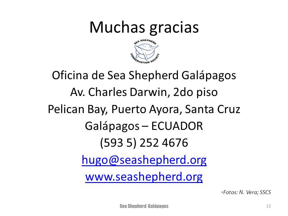 Muchas gracias Oficina de Sea Shepherd Galápagos