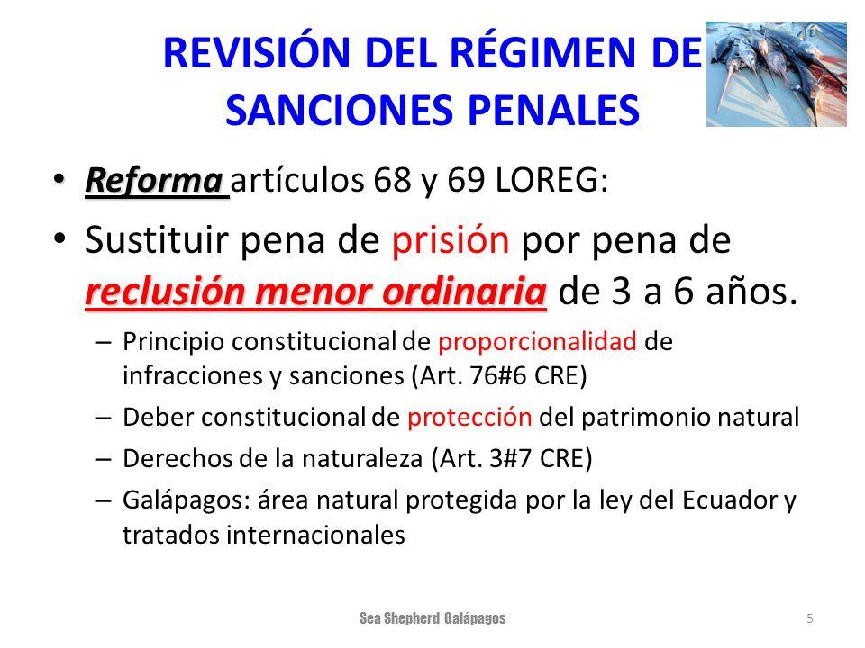 REVISIÓN DEL RÉGIMEN DE SANCIONES PENALES