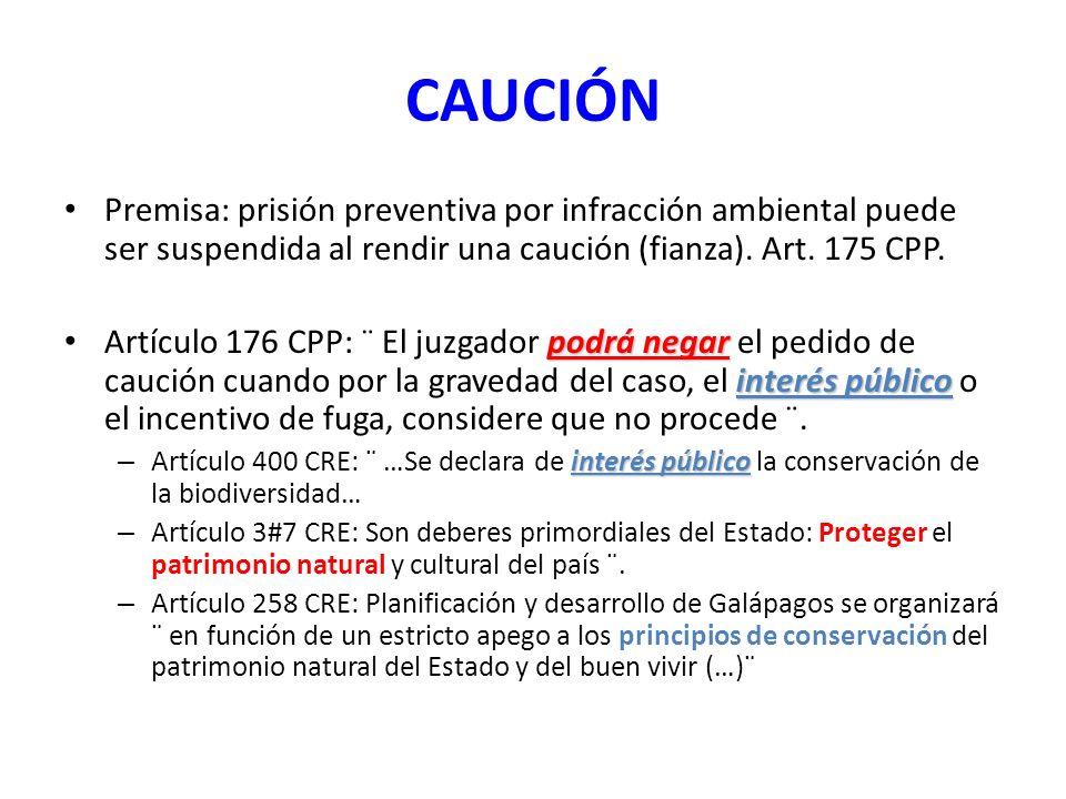 CAUCIÓN Premisa: prisión preventiva por infracción ambiental puede ser suspendida al rendir una caución (fianza). Art. 175 CPP.