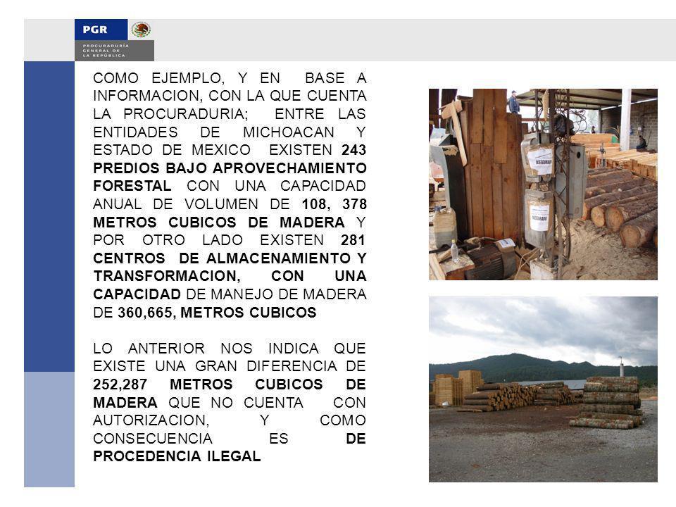 COMO EJEMPLO, Y EN BASE A INFORMACION, CON LA QUE CUENTA LA PROCURADURIA; ENTRE LAS ENTIDADES DE MICHOACAN Y ESTADO DE MEXICO EXISTEN 243 PREDIOS BAJO APROVECHAMIENTO FORESTAL CON UNA CAPACIDAD ANUAL DE VOLUMEN DE 108, 378 METROS CUBICOS DE MADERA Y POR OTRO LADO EXISTEN 281 CENTROS DE ALMACENAMIENTO Y TRANSFORMACION, CON UNA CAPACIDAD DE MANEJO DE MADERA DE 360,665, METROS CUBICOS