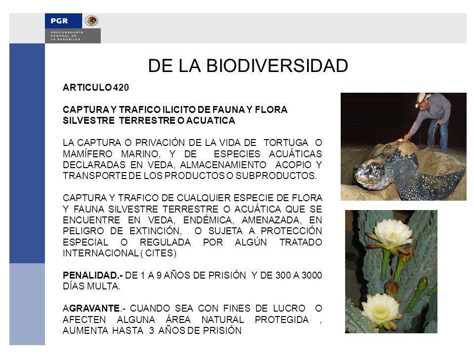 DE LA BIODIVERSIDAD ARTICULO 420