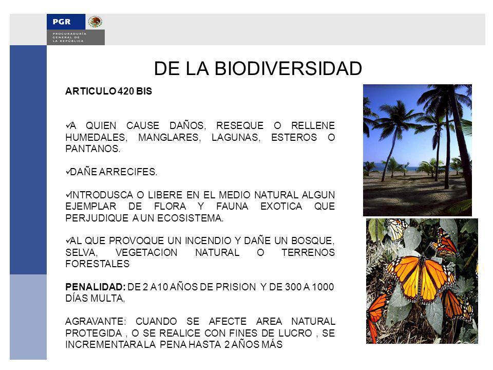 DE LA BIODIVERSIDAD ARTICULO 420 BIS