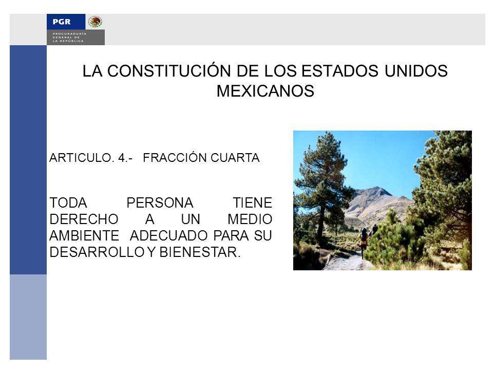 LA CONSTITUCIÓN DE LOS ESTADOS UNIDOS MEXICANOS