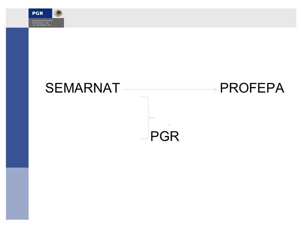 SEMARNAT PROFEPA PGR