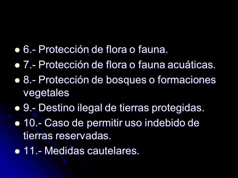 6.- Protección de flora o fauna.