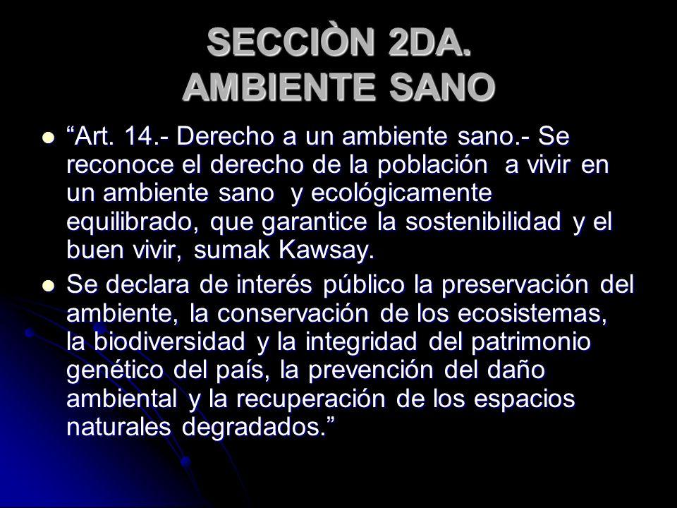 SECCIÒN 2DA. AMBIENTE SANO
