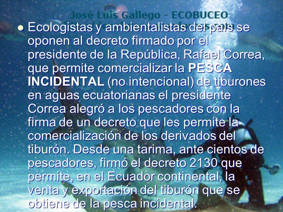 Ecologistas y ambientalistas del país se oponen al decreto firmado por el presidente de la República, Rafael Correa, que permite comercializar la PESCA INCIDENTAL (no intencional) de tiburones en aguas ecuatorianas el presidente Correa alegró a los pescadores con la firma de un decreto que les permite la comercialización de los derivados del tiburón.