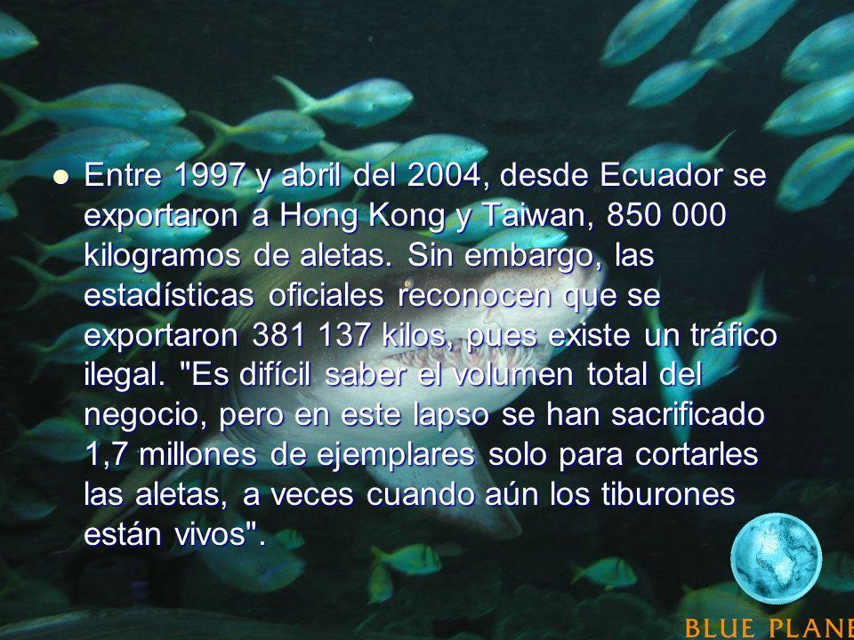 Entre 1997 y abril del 2004, desde Ecuador se exportaron a Hong Kong y Taiwan, 850 000 kilogramos de aletas.