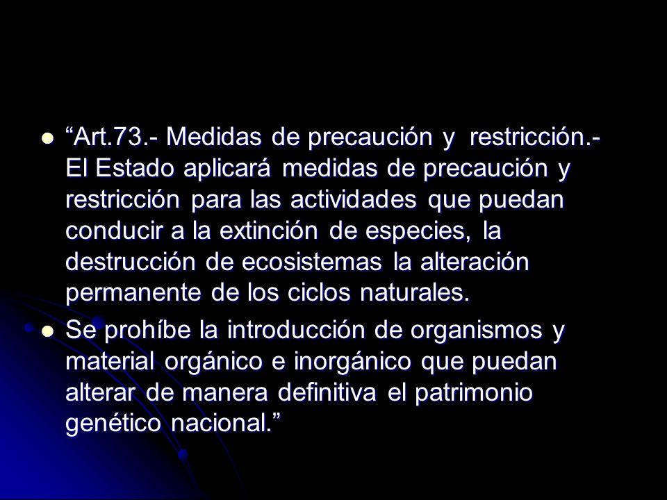Art. 73. - Medidas de precaución y restricción