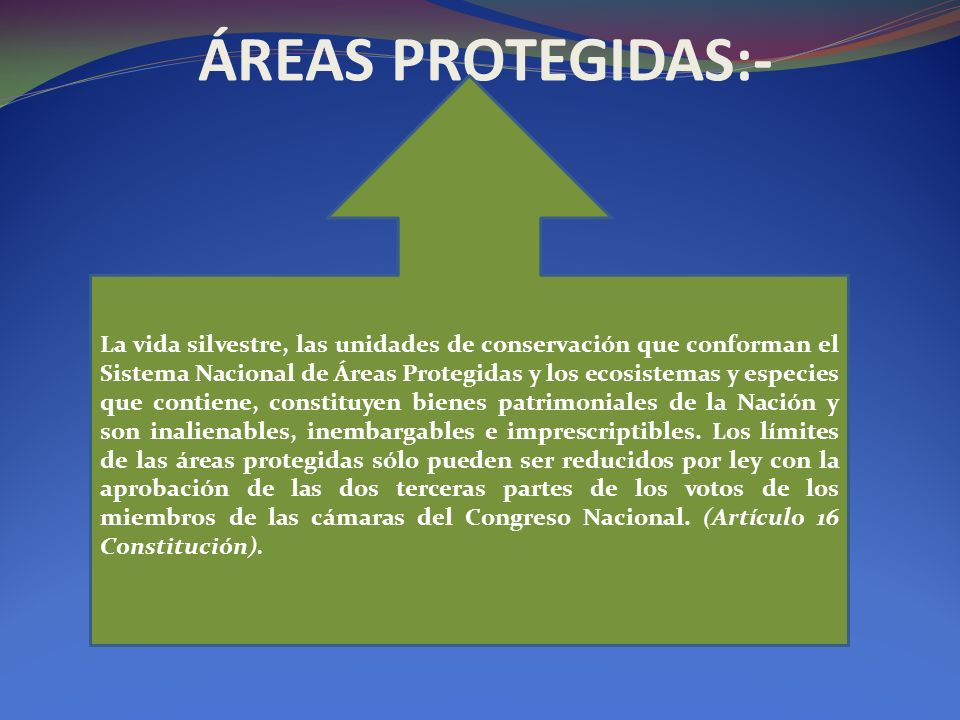 ÁREAS PROTEGIDAS:-