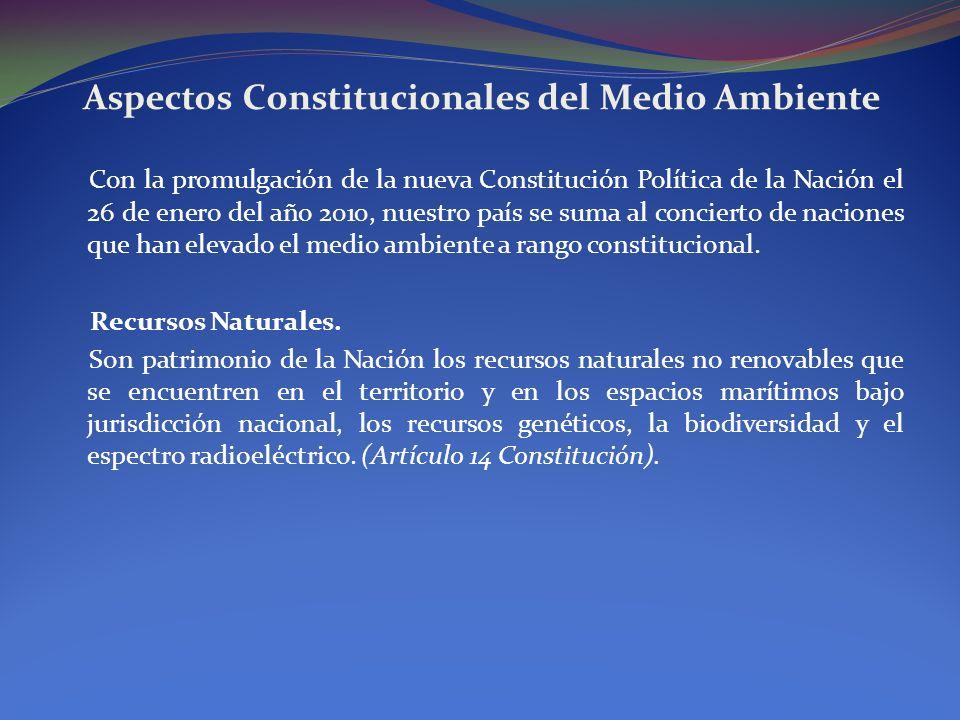 Aspectos Constitucionales del Medio Ambiente