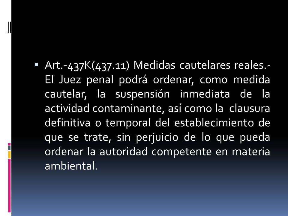Art. -437K(437. 11) Medidas cautelares reales
