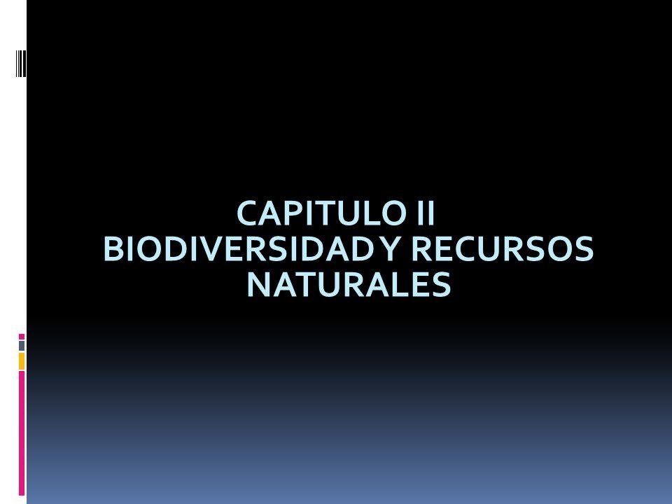 CAPITULO II BIODIVERSIDAD Y RECURSOS NATURALES