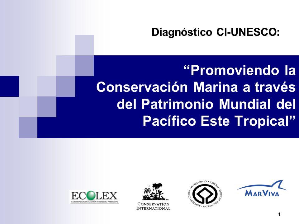 Diagnóstico CI-UNESCO: