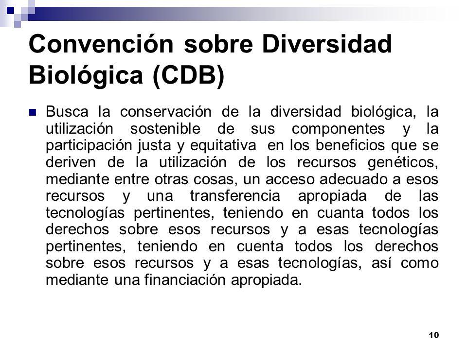 Convención sobre Diversidad Biológica (CDB)