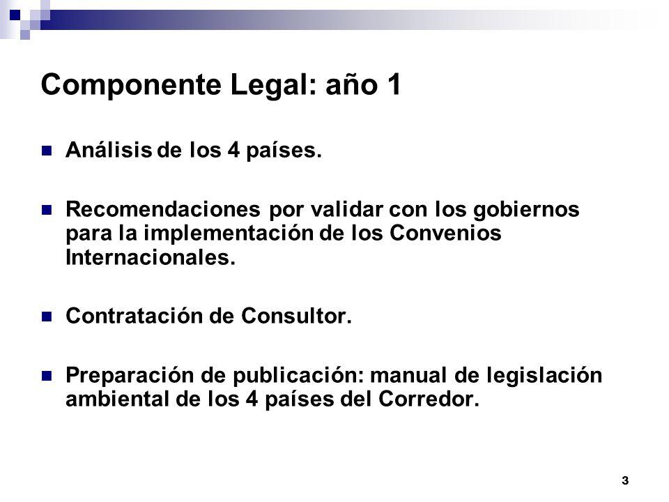 Componente Legal: año 1 Análisis de los 4 países.