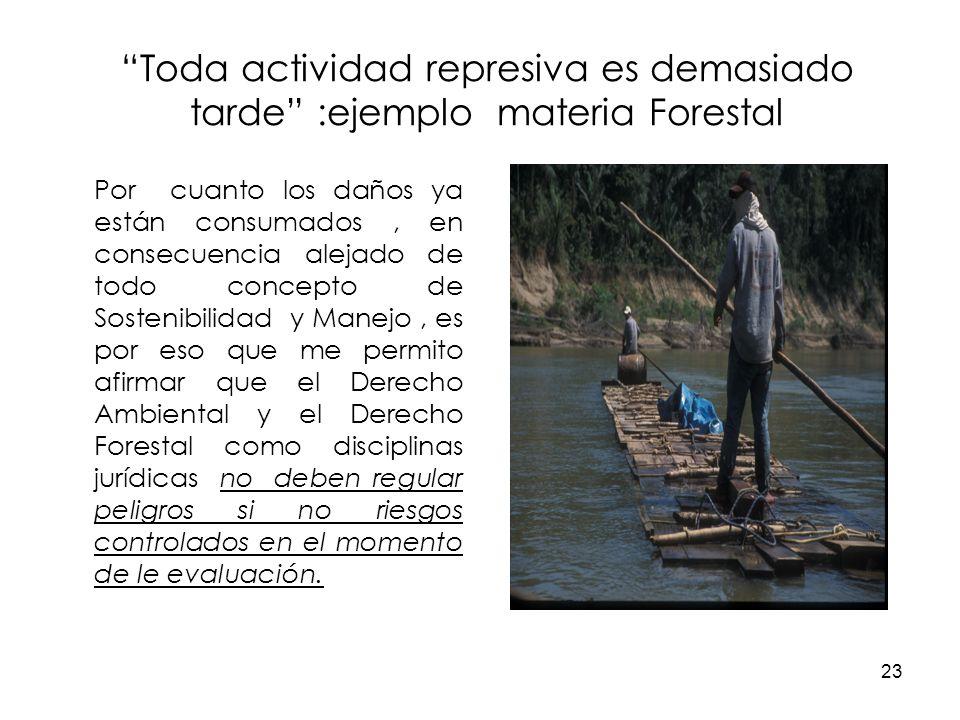 Toda actividad represiva es demasiado tarde :ejemplo materia Forestal