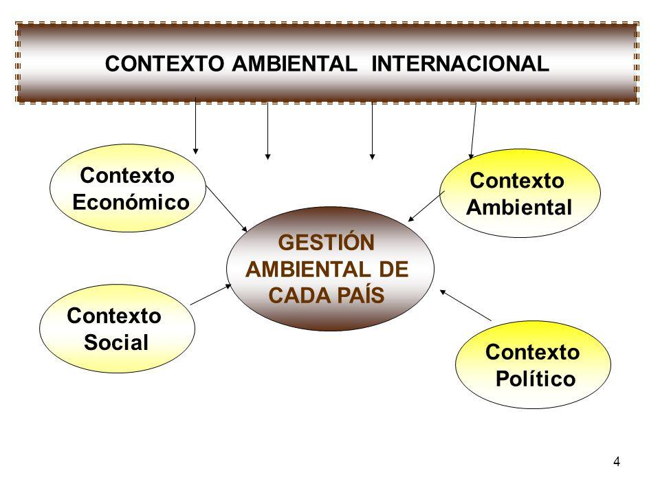 CONTEXTO AMBIENTAL INTERNACIONAL