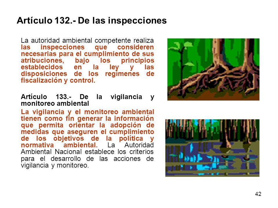 Artículo 132.- De las inspecciones