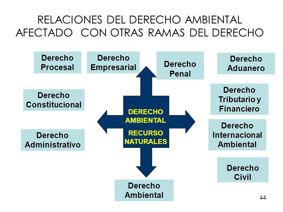 RELACIONES DEL DERECHO AMBIENTAL AFECTADO CON OTRAS RAMAS DEL DERECHO