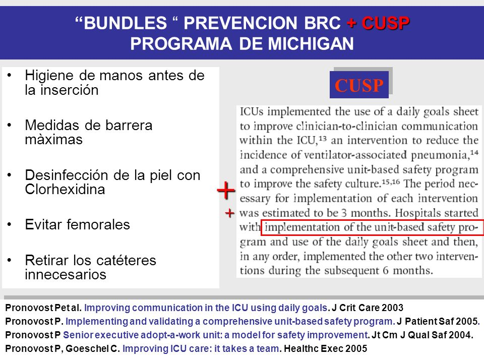 BUNDLES PREVENCION BRC + CUSP PROGRAMA DE MICHIGAN