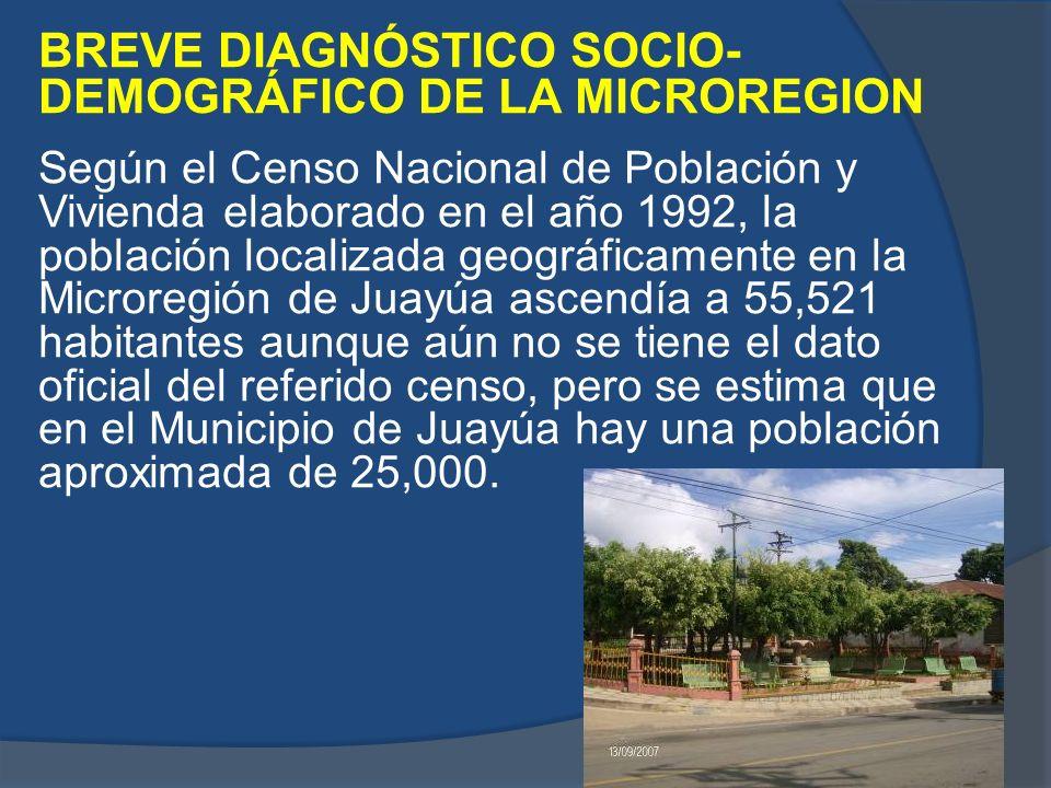 BREVE DIAGNÓSTICO SOCIO-DEMOGRÁFICO DE LA MICROREGION