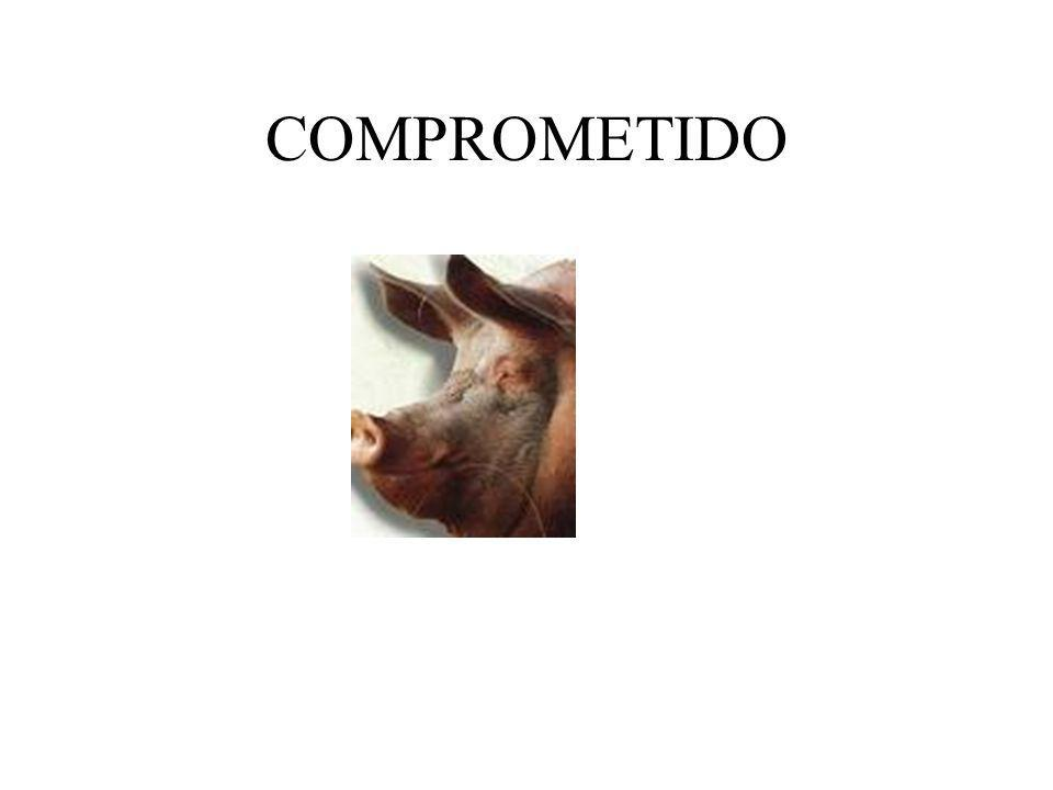 COMPROMETIDO