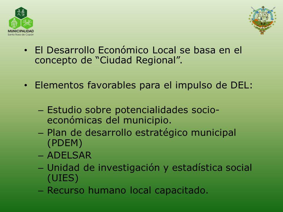 El Desarrollo Económico Local se basa en el concepto de Ciudad Regional .