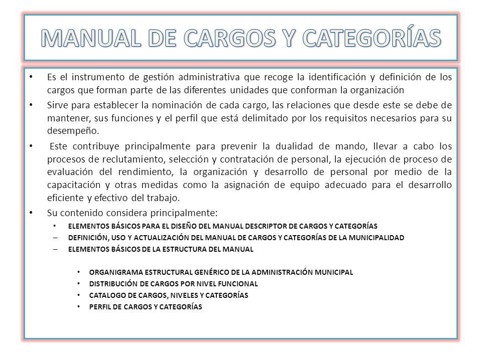 MANUAL DE CARGOS Y CATEGORÍAS
