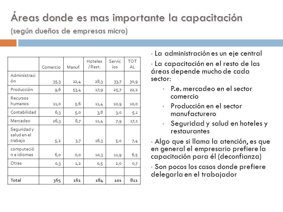 Áreas donde es mas importante la capacitación (según dueños de empresas micro)
