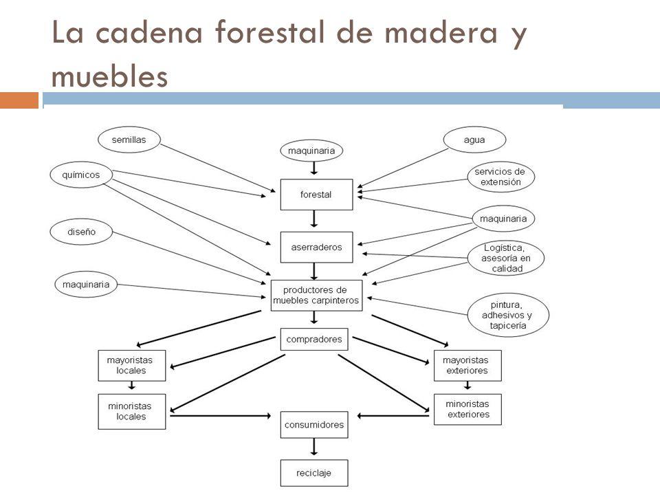 La cadena forestal de madera y muebles