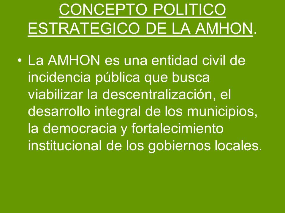 CONCEPTO POLITICO ESTRATEGICO DE LA AMHON.