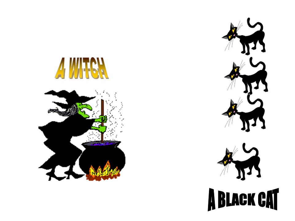 A WITCH A BLACK CAT