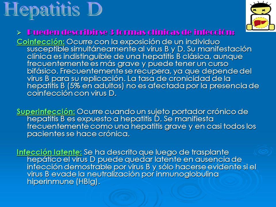 Hepatitis D Pueden describirse 3 formas clínicas de infección: