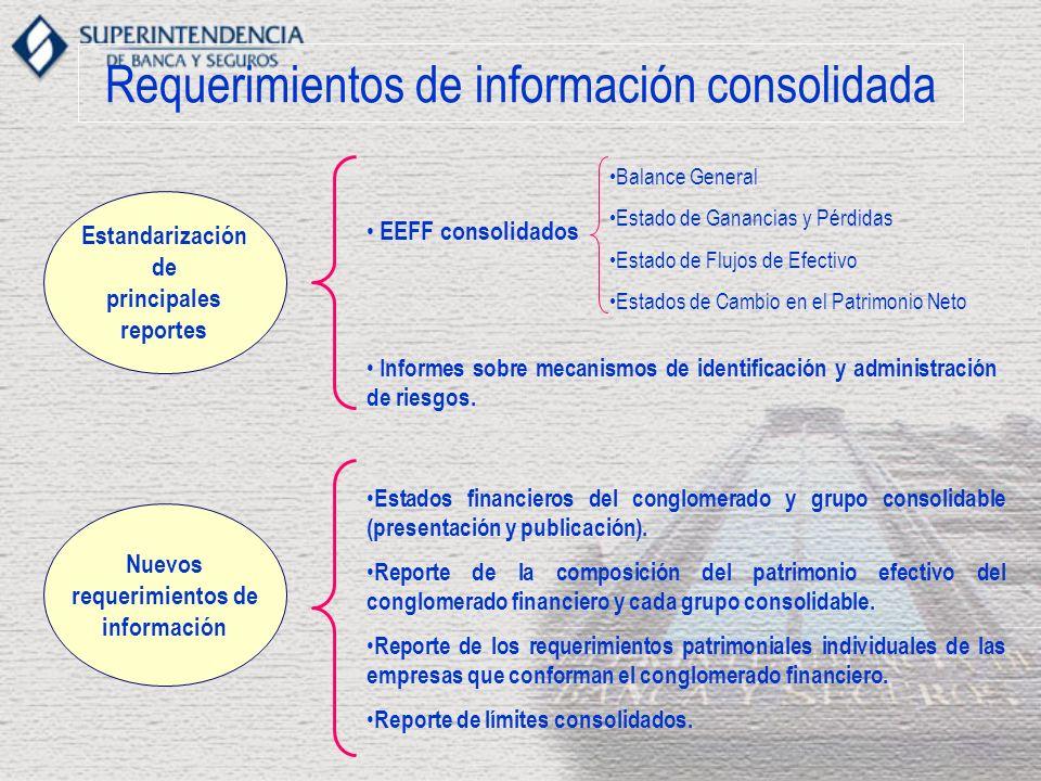 Requerimientos de información consolidada