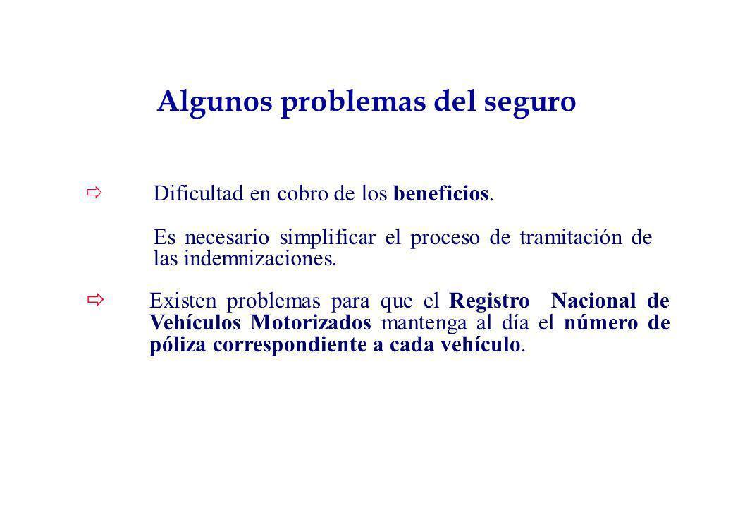 Algunos problemas del seguro
