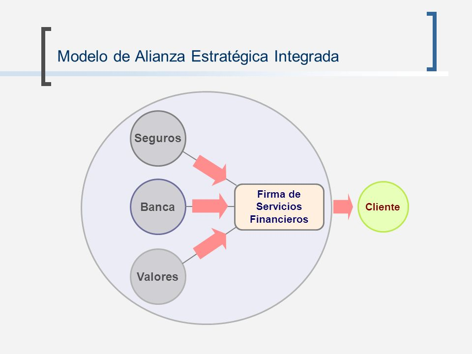 Modelo de Alianza Estratégica Integrada