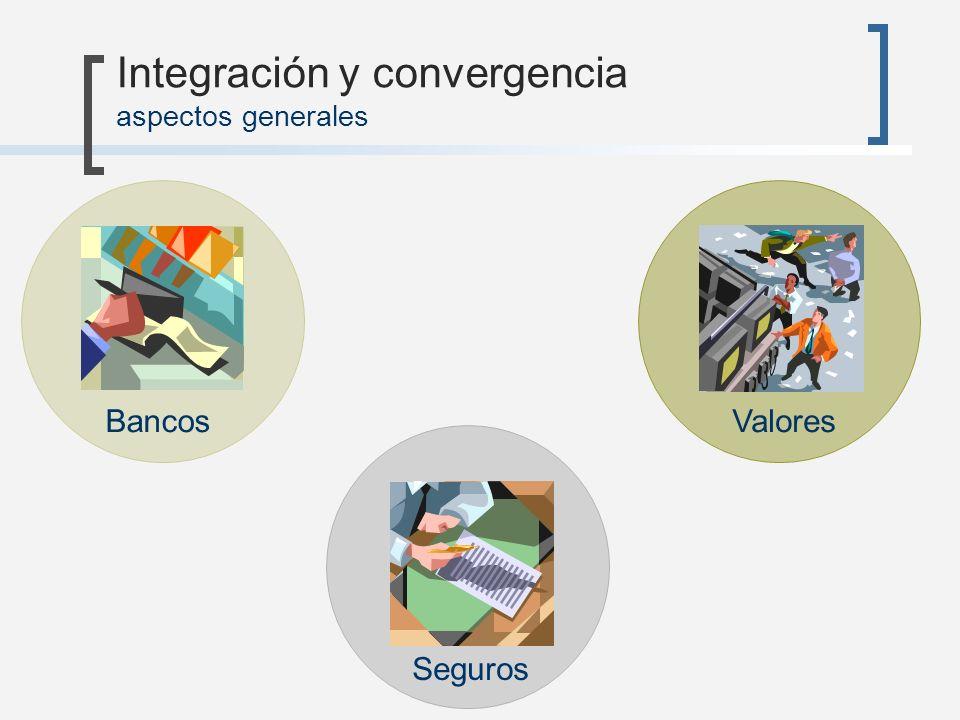 Integración y convergencia aspectos generales