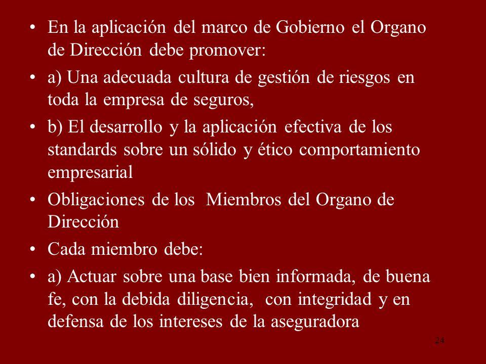 En la aplicación del marco de Gobierno el Organo de Dirección debe promover: