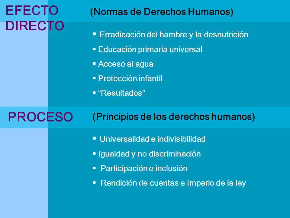 EFECTO DIRECTO PROCESO (Normas de Derechos Humanos)