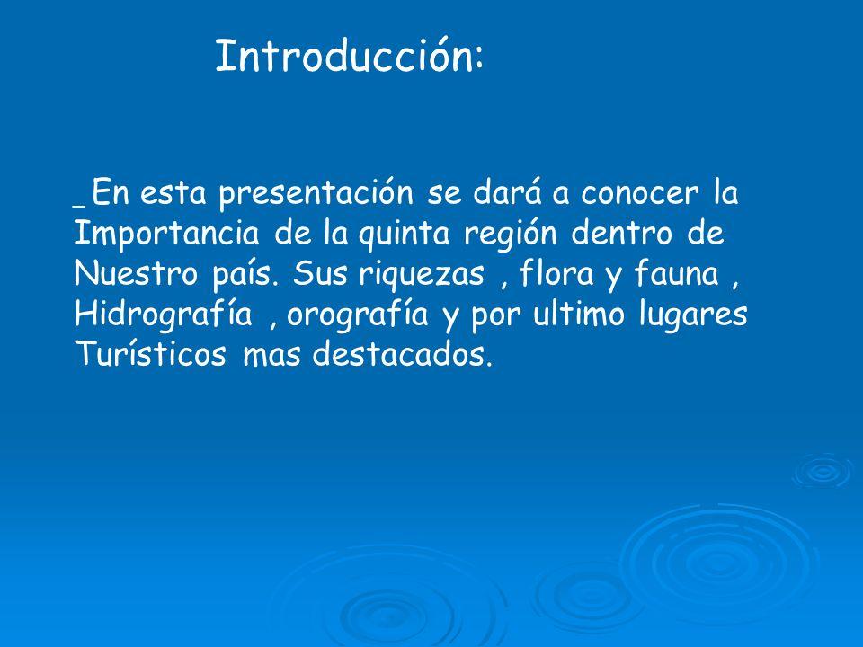 Introducción: Importancia de la quinta región dentro de