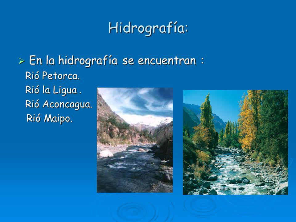 Hidrografía: En la hidrografía se encuentran : Rió Maipo. Rió Petorca.