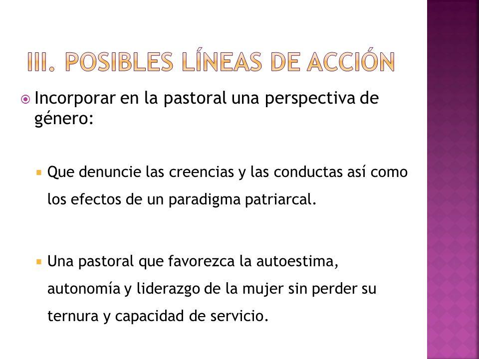 iii. Posibles líneas de acción