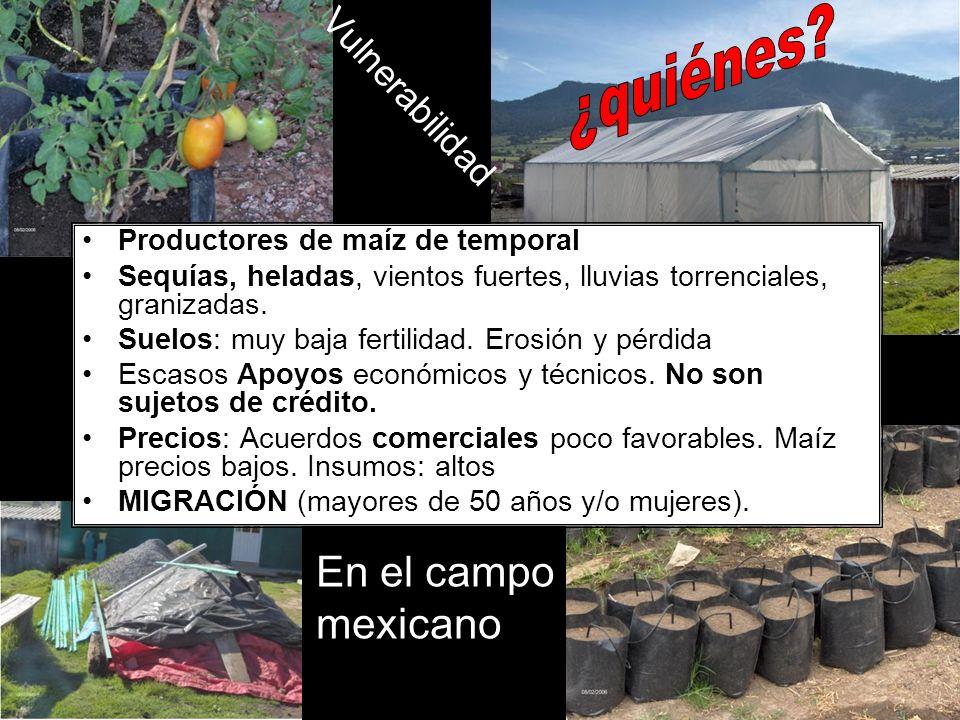 ¿quiénes En el campo mexicano Vulnerabilidad