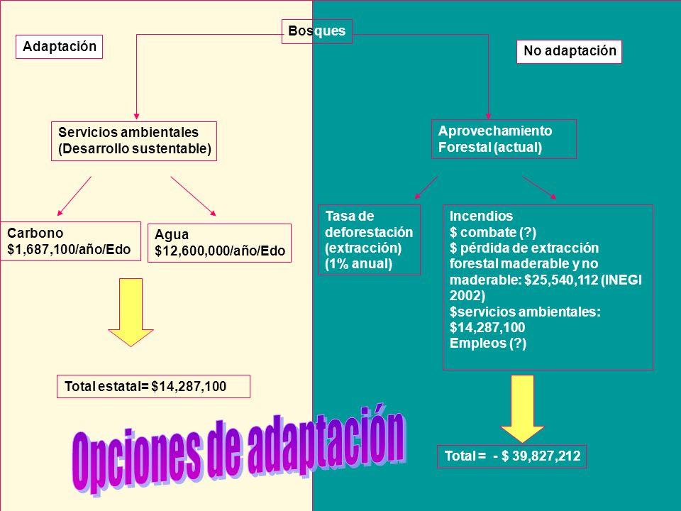 Opciones de adaptación