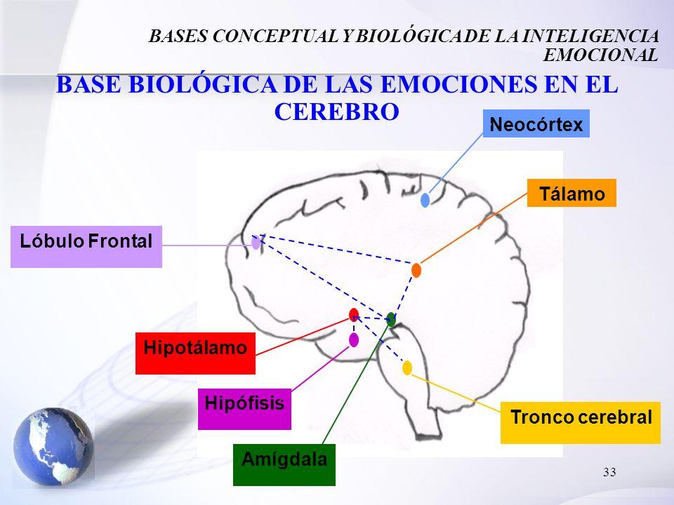 BASE BIOLÓGICA DE LAS EMOCIONES EN EL CEREBRO