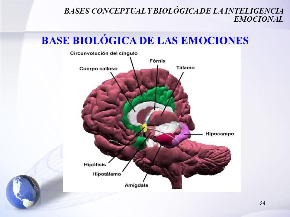 BASE BIOLÓGICA DE LAS EMOCIONES